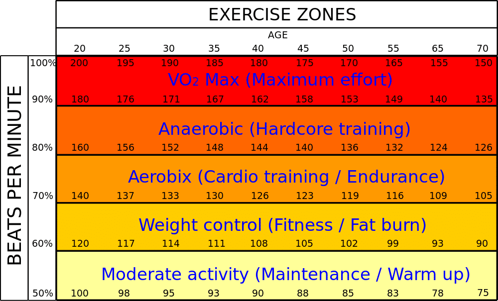 heart rate zone training with wearables - Heart rate zone training with wearables