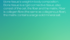 image 18 140x80 - Review: Yunmai Smart Scale