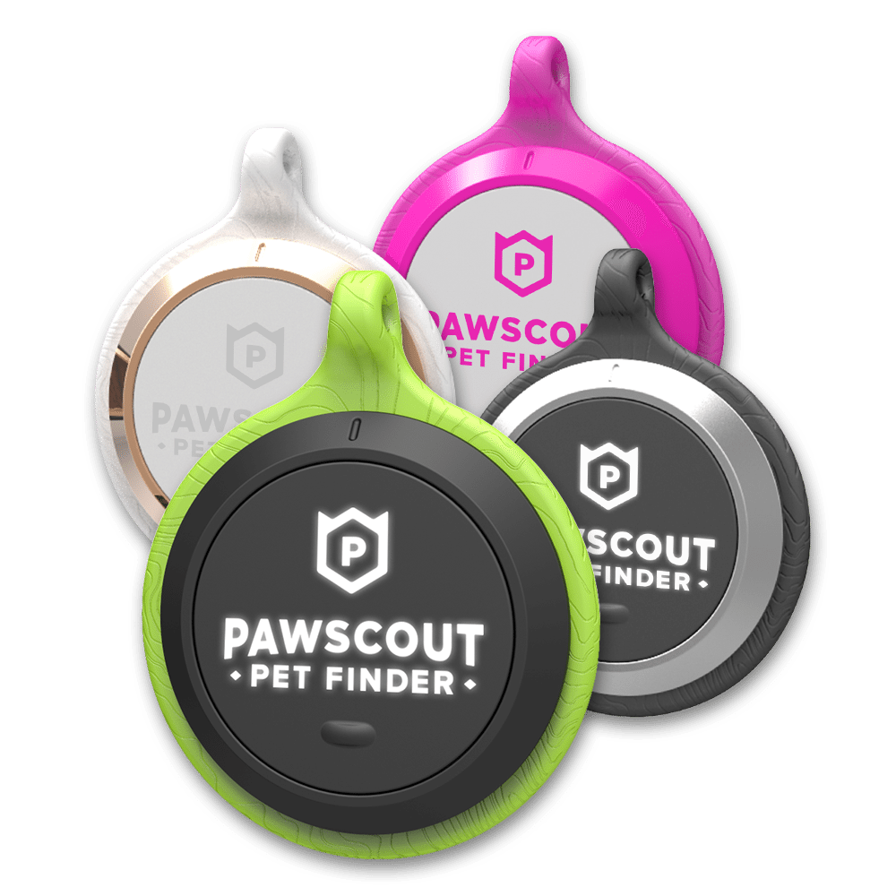 the best tracking devices and smart collars for cats - Keep your dog safe and fit with these smart collars and GPS trackers