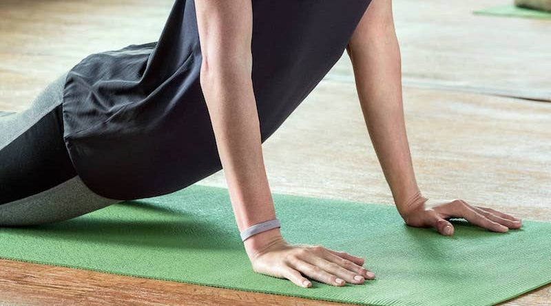 Fitbit says Wisconsin woman's Flex 2 didn't explode on its own