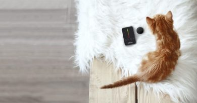 The best tracking devices and smart collars for cats