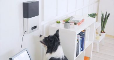 Five cool gadgets to help with training your pet