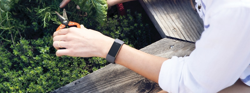 choosing the right fitbit tracker 1 - Choosing the right Fitbit tracker