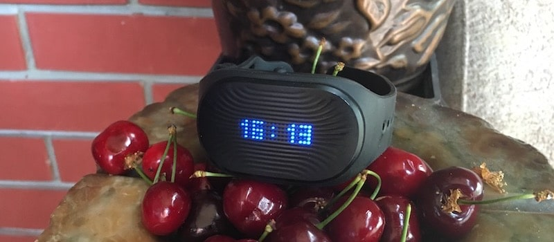 review healbe gobe 2 putting the automatic calorie tracker to the test 7 - Review Healbe GoBe 2: can this wearable really count calories consumed?