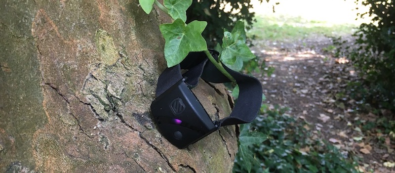 review scosche rhythm24 puts accurate heart rate monitoring on your arm 5 - Review: Scosche RHYTHM24 puts accurate heart rate tracking on your arm