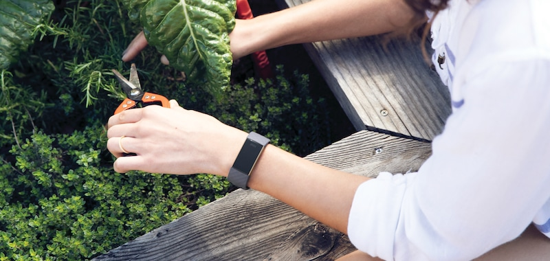 Fitbit Charge 3 vs Garmin Vivosmart 4: the battle of the fitness
