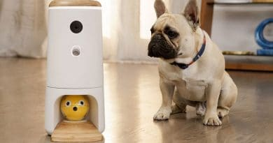 Pupple: Play, treat, watch your dog remotely