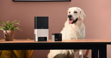 CES 2019: Petcube 2 lets you use Alexa to lob treats at your bets